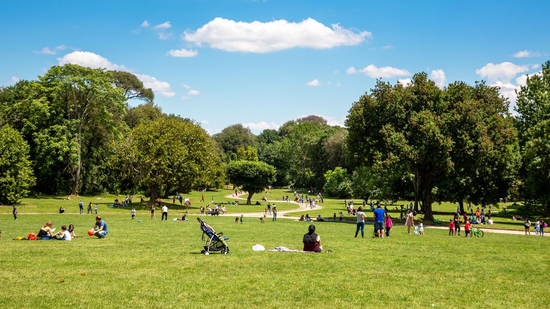 Families enjoying park outdoors